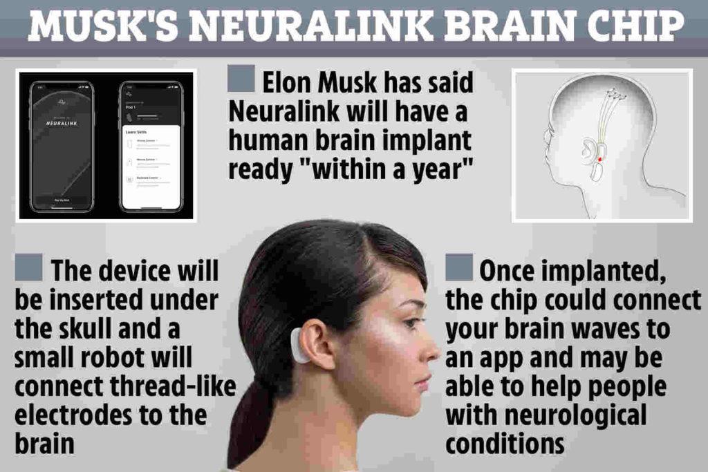 elon musk neuralink chips